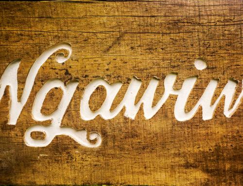 Ngawiwi Farm Intro